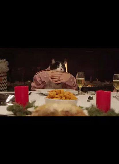 Tierisches Abendessen